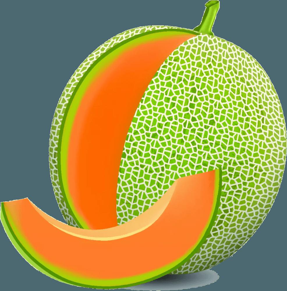 A cantaloupe